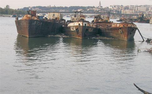 Kolumnističko-sudijska flota