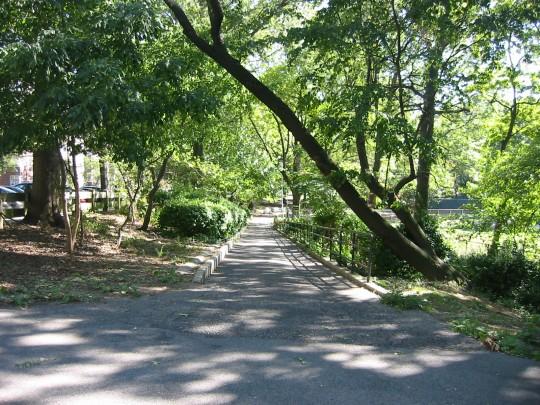 Bronx Park Walk