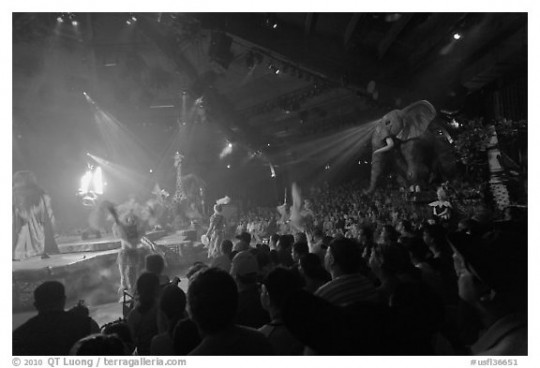 Audience and stage, Circus show, Walt Disney World. Orlando, Florida, USA