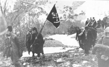 Belina u srpskoj istoriografiji